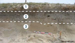 photographie explicative des différentes couches de sediments