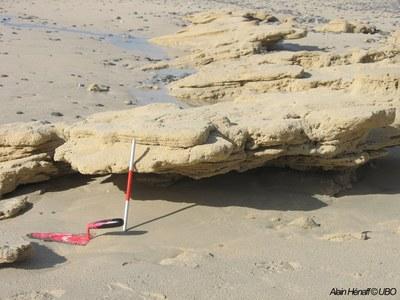 photographie montrant des sediments sur les littoraux bretons