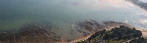 photographie aérienne de bord de mer avec des terrains de verdure